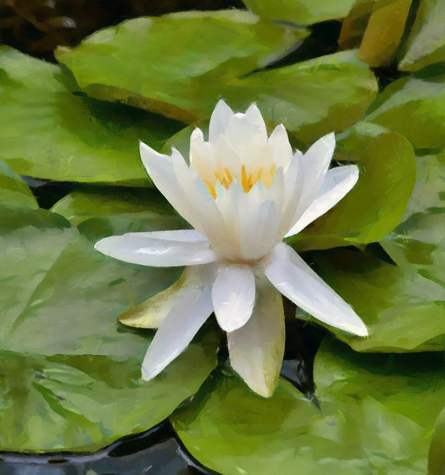 macbwaterlilly_2_DAP_!!_LIPOGg.jpg