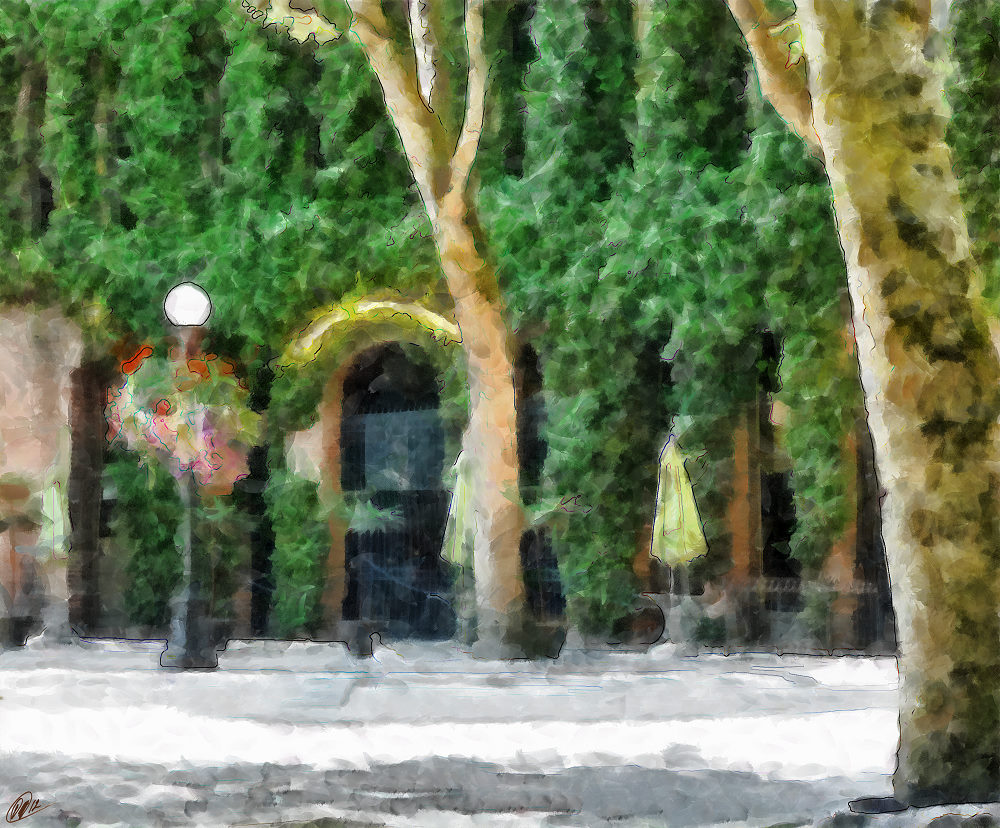 Occidental Park 001-small - DAP_YAWCA.jpg